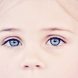 Ty by Alan Evans - People Body Parts ( children portrait, children, blue eyes, cute, eyes,  )