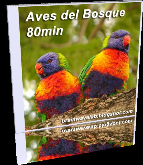 Aves del Bosque WEB.png