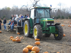 Tractor crushing pumpkin