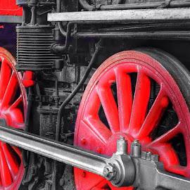 choo + choo = train by Richard Mandac - Transportation Trains (  )
