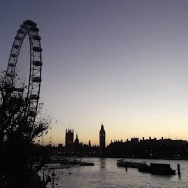 Londinium by Shona McQuilken - City,  Street & Park  Skylines ( parliament, london eye, skyline, london, silhouette, sunset, big ben )