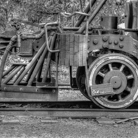 Cow catcher by Michael Wolfe - Transportation Trains ( steam engine, locomotive, train, antique train engine, engine wheel,  )