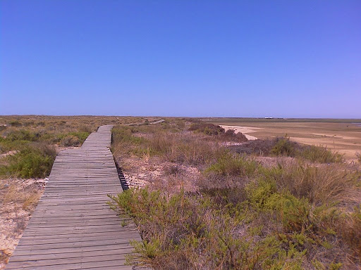 Foto de  Coastal trekking on Deserta Island (Algarve, Portugal)