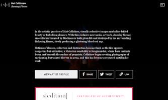Screenshot of Sedition