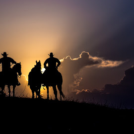 Evening Ropers by Gary Hanson - Sports & Fitness Rodeo/Bull Riding ( southdakota, ropers, sunset, cowboys, crystal springs )