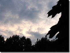 早晨的天空