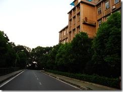 武汉大学静谧