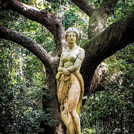 The Lady in the Garden by Shawn Klawitter - Buildings & Architecture Statues & Monuments ( statue, outdoors, lady, elizabethan gardens )