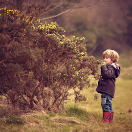 Picking Flowers by Claire Conybeare - Chinchilla Photography - Babies & Children Toddlers