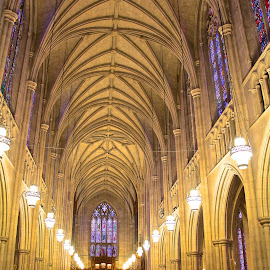 by Kathy Suttles - Buildings & Architecture Places of Worship ( church, spiritual, arches, pews, cathedral, stained glass,  )