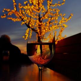 Arizona Sunset by Geoffrey Chen - Artistic Objects Glass ( lights, wine, tree, color, sunset, arizona, glass, bokeh )