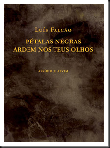 Luis Falcão