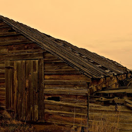 Sheep Shed by Vern Tunnell - Buildings & Architecture Decaying & Abandoned