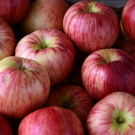 Pinkish by Rakesh Syal - Food & Drink Fruits & Vegetables (  )