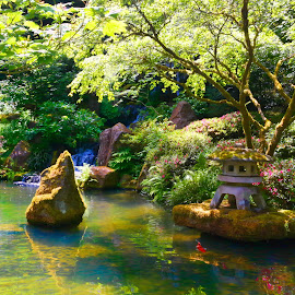 Lower Pond at Portland's Japanese Garden by Steven McCarthy - City,  Street & Park  City Parks ( oregon, portland, japanese, pond, garden )