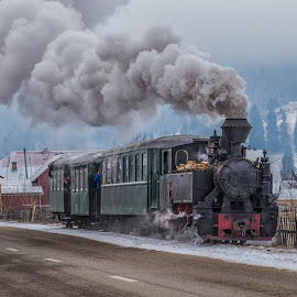 Mocanita Bucovina by Pascal Hubert - Transportation Trains (  )