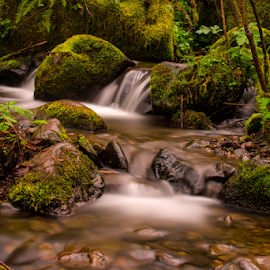 Stream by Michael Sanders - Landscapes Waterscapes ( water, stream, long exposure )