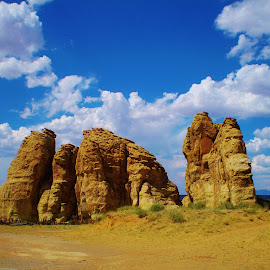 The Amigos by Samantha Linn - Nature Up Close Rock & Stone