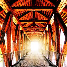 Bridge Beyond by Sue Neitzel - Buildings & Architecture Bridges & Suspended Structures ( amish, scenic, bridge, rustic )