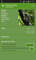 Screenshot of Bird Guide to Tortuguero NP CR