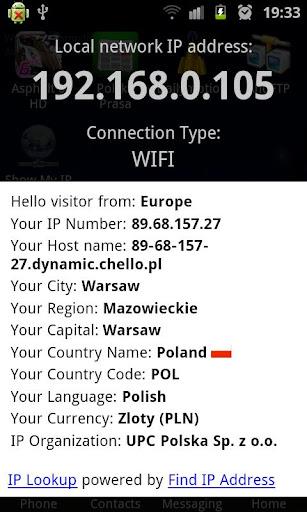 顯示我的IP