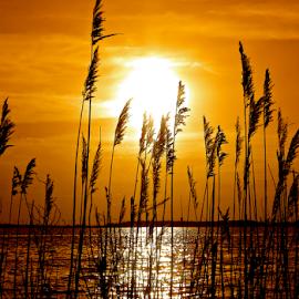 by Mary Motsay - Landscapes Sunsets & Sunrises