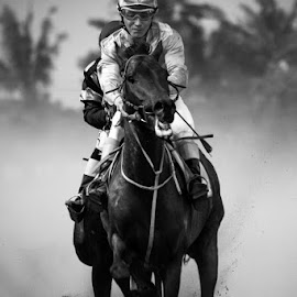 Leading by Biel 's - Sports & Fitness Other Sports ( champion, leading lines, winning, riding, racing, horse, man )