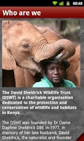 Screenshot of David Sheldrick Wildlife Trust