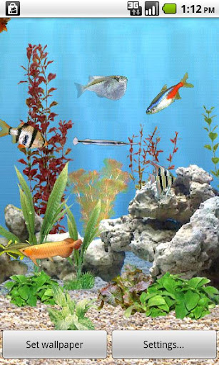 desktop aquarium 3d live wallpaper free download - Softonic