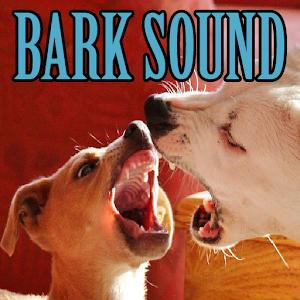 Big Dog Barking Sounds Download