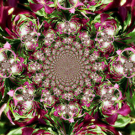 The Flower Kolidescope by Yvonne Collins - Digital Art Abstract ( edited, abstract, pink flowers, patterns, illustration )