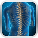 Spine Glossary icon