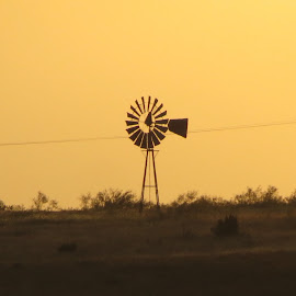 Texas Windmill by Brent Hagie - Landscapes Prairies, Meadows & Fields (  )