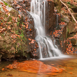 Avalon Falls by Nicolas Raymond - Landscapes Waterscapes ( stone, rock, flow, vibrant, travel, leaves, colour, colourful, nature, fluid, autumn, foliage, movement, maryland, motion, patapsco valley, avalon, patapsco valley state park, colors, tourism, united states, colours, scene, stream, smooth, america, waterscape, colorful, rocky, waterfall, moss, landscape, usa, pool, long exposure, mossy, pond, rocks, water, streaming, patapsco, park, orange grove, flowing, cascades, scenic, soft, color, falls, fall, cascading, scenery, whirlpool,  )