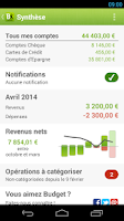Screenshot of Fortuneo Budget