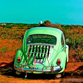 green punch bug VW by Ron Kreft - Transportation Automobiles ( vw, car, punch bug )