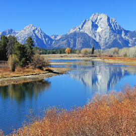 Grand Tetons by Ashley Crookes - Landscapes Mountains & Hills ( water, reflection, mountain, america, wyoming, wildlife, forest, grand tetons, landscape, usa, national park, north america, nature, scenery, river )