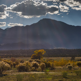 Rays in the Desert by Leslie Nu - Landscapes Deserts ( hills, mountains, desert, cacti, cloudscapes, landscapes, sun rays, cactus )
