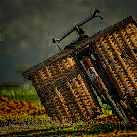 by Wartono Kumpulono - Transportation Bicycles