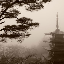 A Japanese Pagoda by Ramanathan Sabapathy - Buildings & Architecture Places of Worship