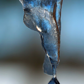 The world Through an Icicle by Dave Fisher - Novices Only Objects & Still Life ( water, winter, ice, drop, icicle )