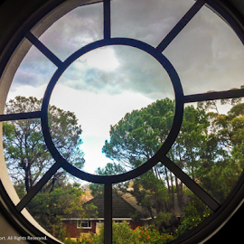 The Window by Clifford Wort - Buildings & Architecture Other Interior ( clear, tree, window, bars, cloud, round, house, view,  )