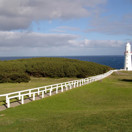 Lighthouse Path by Ian McAdie - City,  Street & Park  Vistas ( guide, railing, hill, structure, building, park, grass, cliff, lighthouse, travel, sun, tower, nature, path, cloud, walkway, illumination, light )