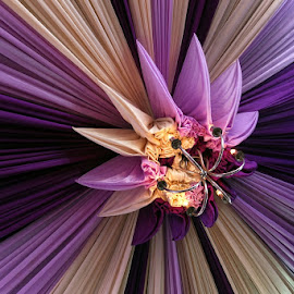 sweet purple by Titan Widiarto - Artistic Objects Other Objects ( purple )