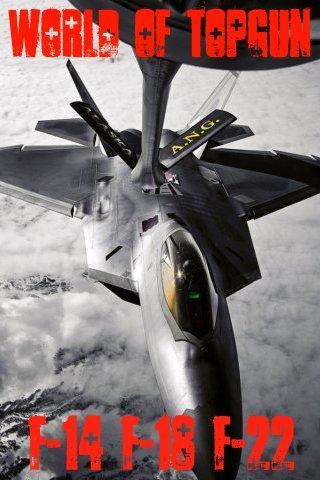 世界の戦闘機図鑑 F-14 F-18 F-22