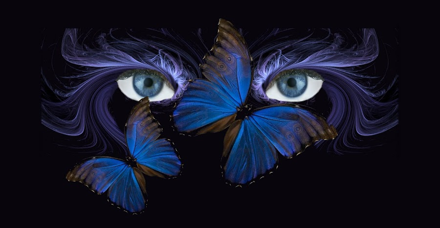 Butterfly Eyes by Carmen Velcic - Digital Art People ( eyes butterfly abstract blue )
