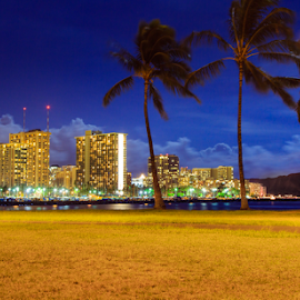 Magic Island at night 1 by Leah Varney - City,  Street & Park  Skylines ( night photography, waterscape, buildings, palm trees, seascape, nightscape,  )