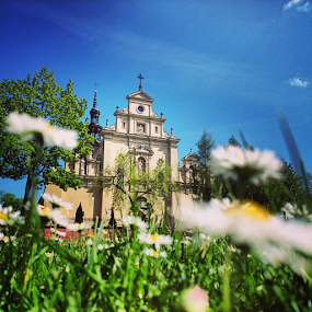 Cathedral Church by Jakub Juszyński - Instagram & Mobile Android ( church, grass, green, daisy, kielce, cathedral, poland )