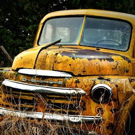 Old Yeller by Gary Winterholler - Transportation Automobiles