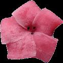 Wagashi2 icon